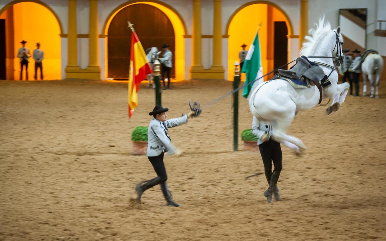 Til dans med de andalusiske heste - rideskolen i Jerez de la Frontera, Andalusien, Spanien