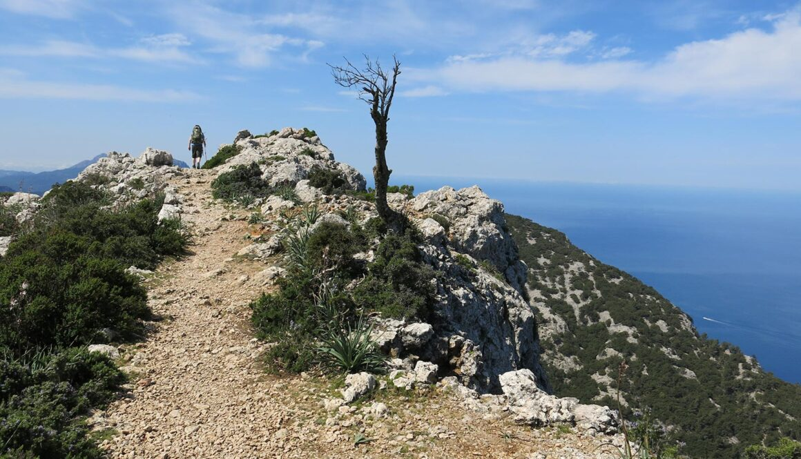 Vandretur i Mallorcas Tramuntana-bjerge