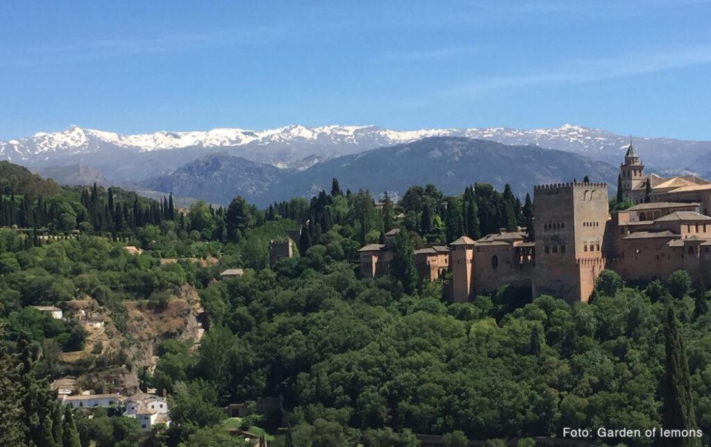 Tag på kunstkursus i Granadas uturistede bagland - foto: Garden of lemons