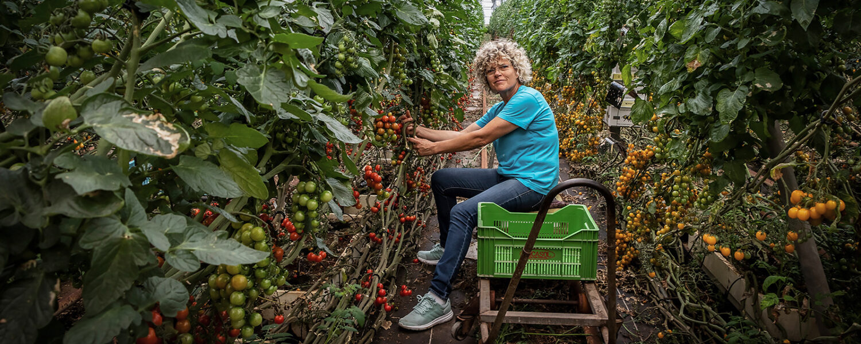 Lola dyrker bæredygtige tomater og peberfrugter i Plastikhavet i Almería