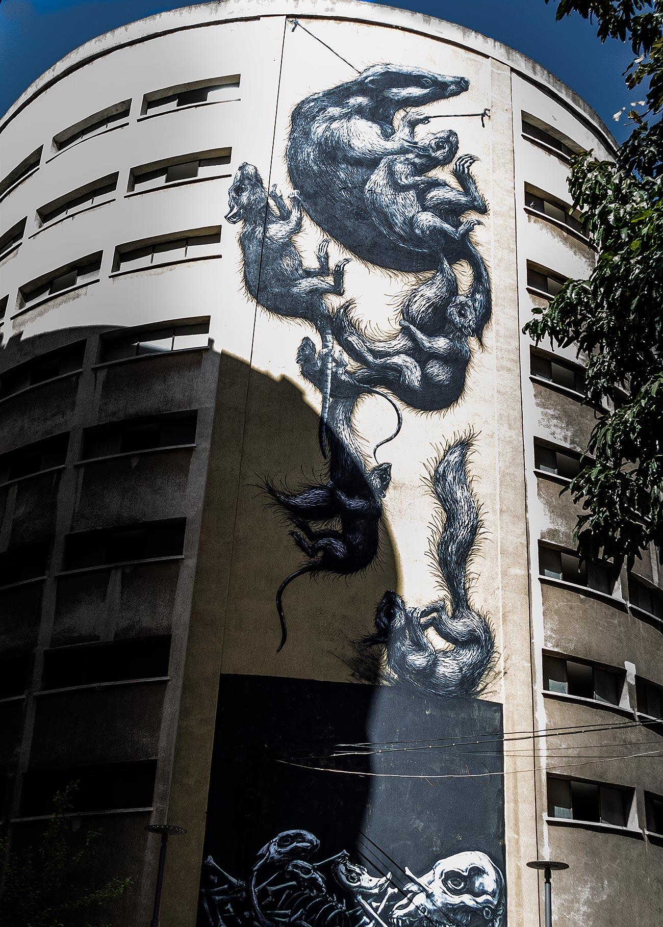 Den belgiske kunstner ROAs rotter bryder en hjørnet af en husfacade i Málaga.